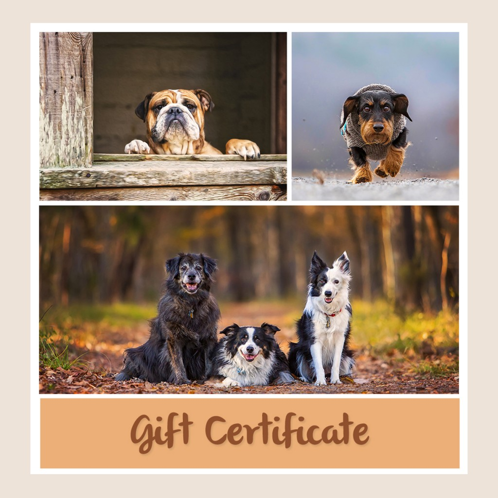 Central Arkansas Pet Photography Gift Cards