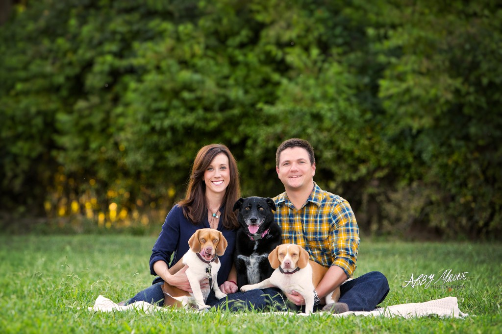 Top Pet Photographers in Little Rock, AR