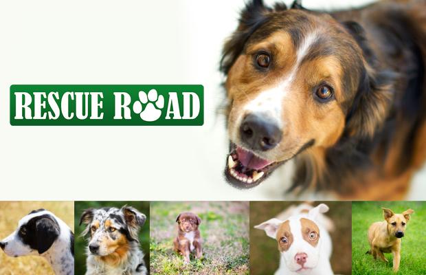 RescueRoad