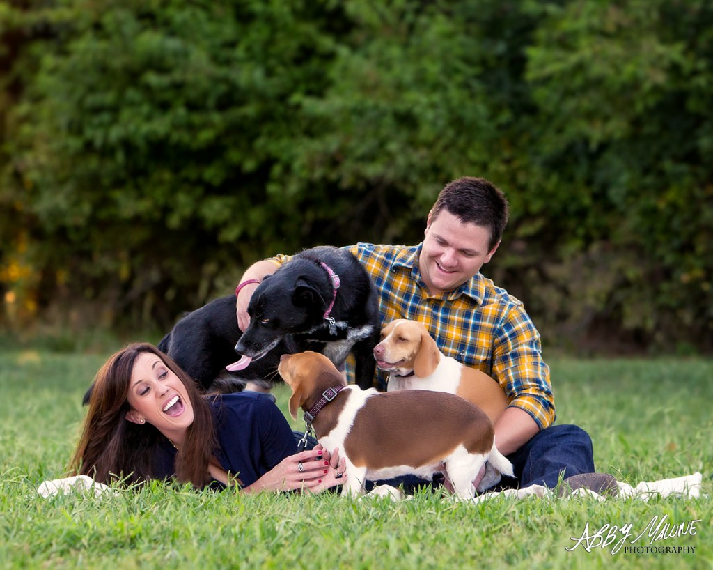 Central Arkansas Pet Photography